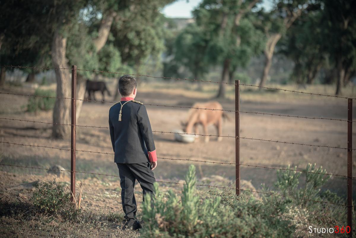 Comunion campo los barrios caballo